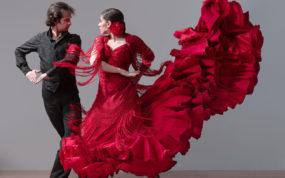 Танцевально-музыкальное шоу Малена