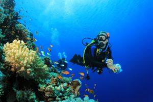 Товары для дайвинга и подводной охоты