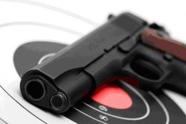 Стрельба в стрелковом комплексе Shooter