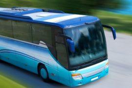 Билеты на автобус на Туту.ру