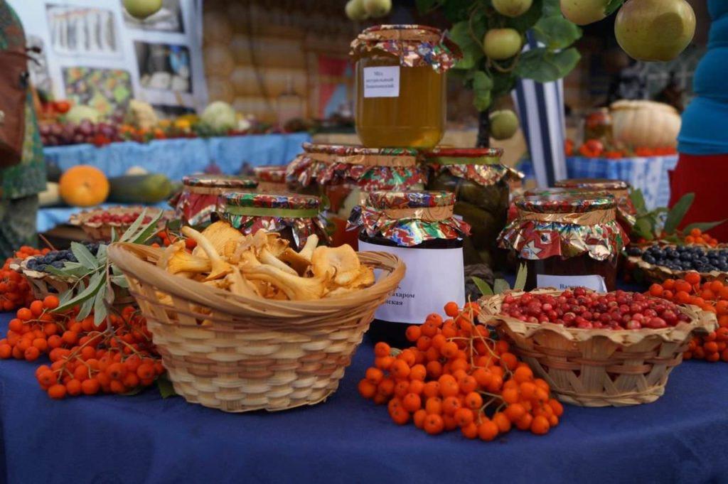 Бесплатные развлечения в Москве: марафон Золотая осень