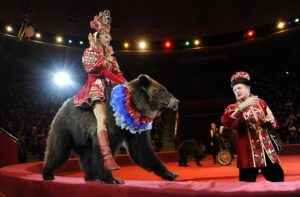 Цирковое шоу Царевна-Несмеяна