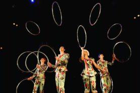 Цирковое шоу AVIZZO