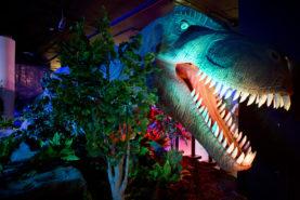 Развлекательный центр Dino Club