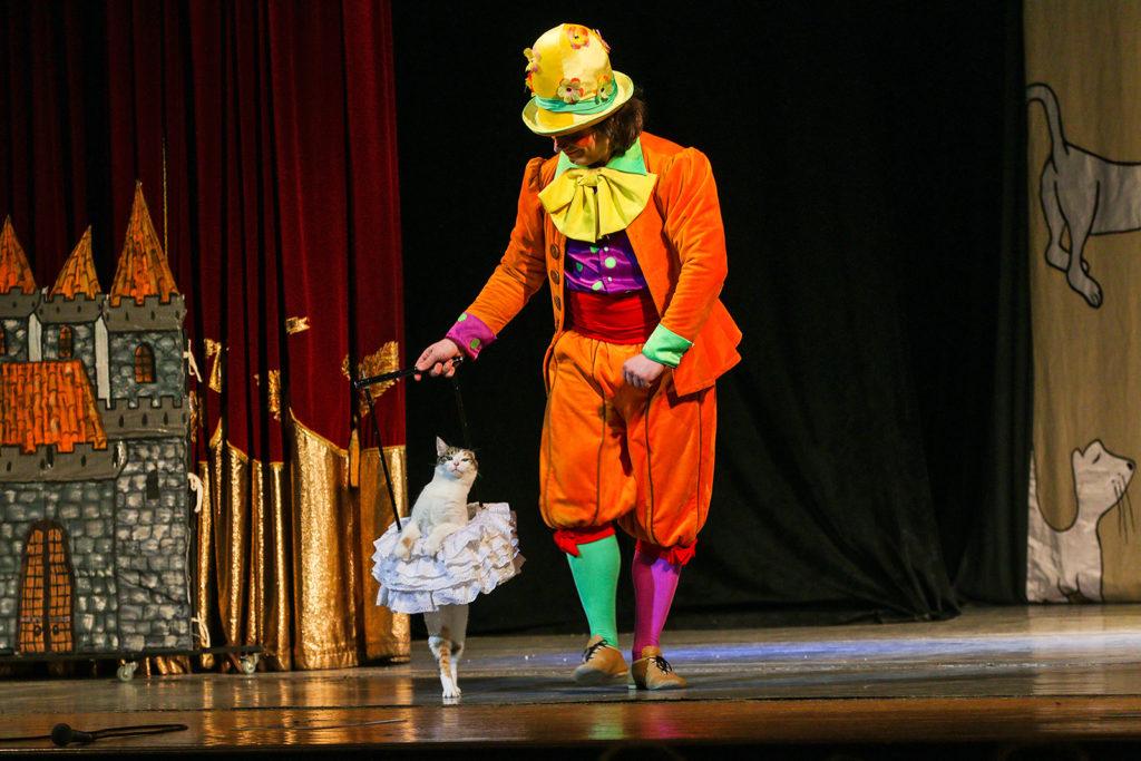 Спектакль Пушистая рапсодия в Театре кошек Куклачева