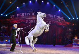 Шоу «Монте-Карло – Москва»
