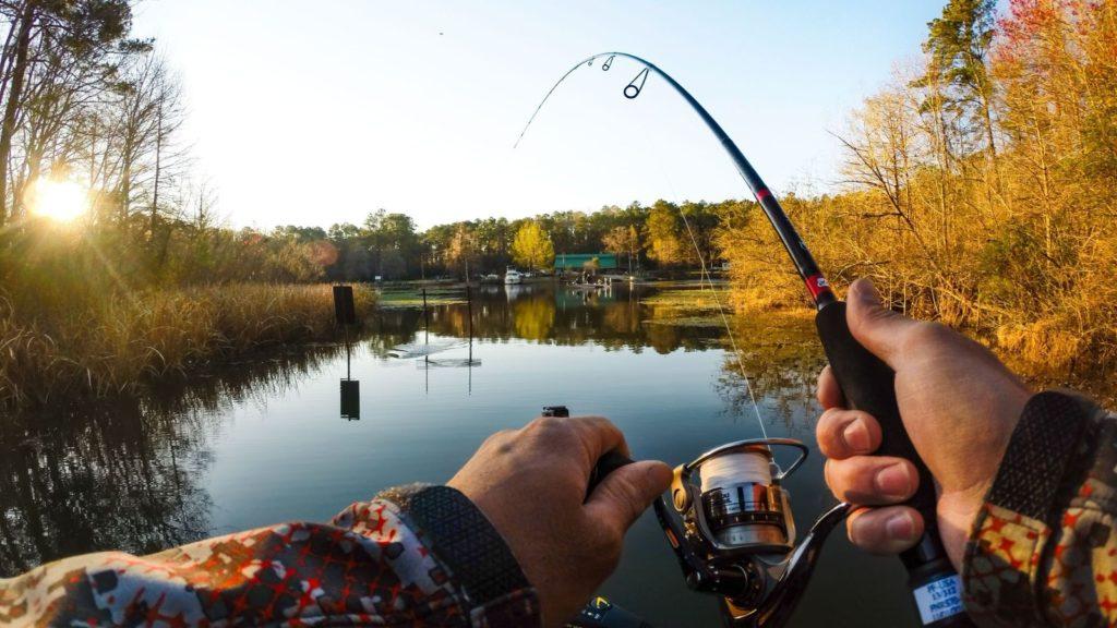Рыбалка в Горчухино от отеля «Купецъ»