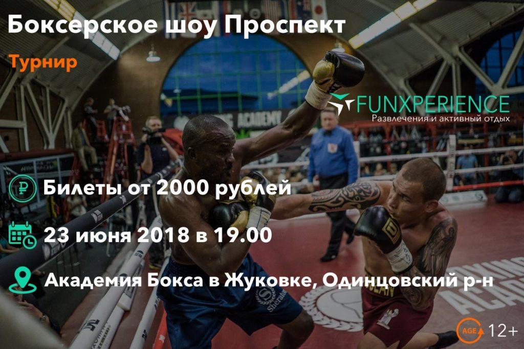 Боксерское шоу Проспект