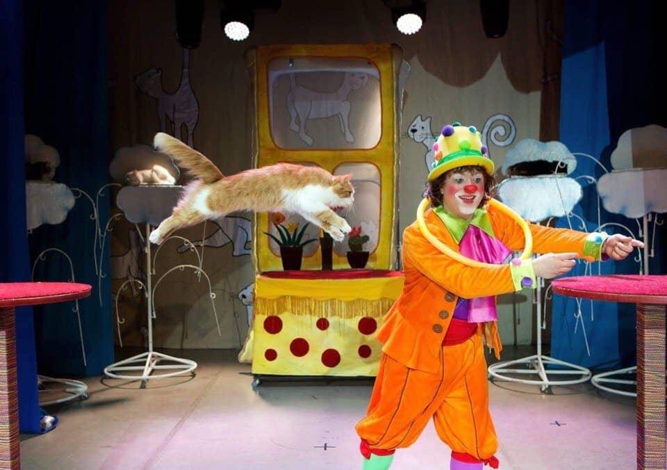 Спектакль «Кошки в городе» в театре Куклачева