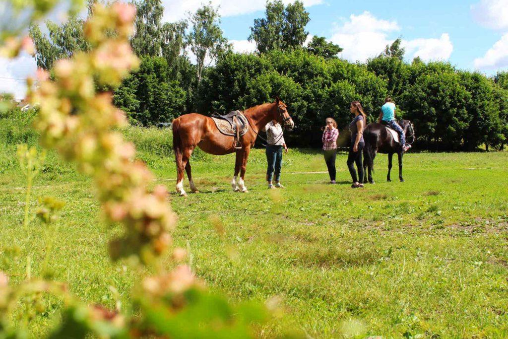 Прогулка на лошадях в конном дворе «Хутор»