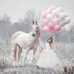 сон наяву шоу с лошадьми