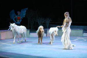 новогоднее цирковое шоу в уск цска