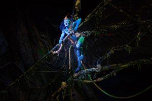 шоу Toruk. Cirque du Soleil