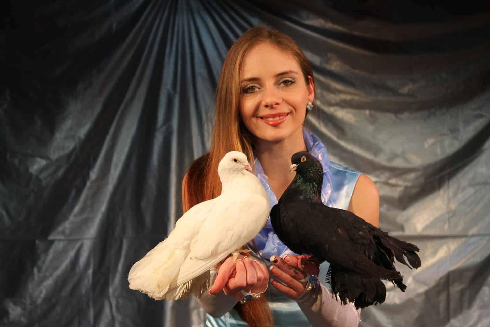 Спектакль Шоу птиц в Москве